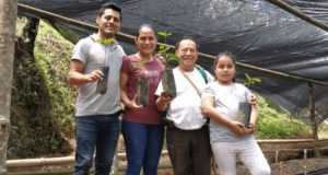 The Altamirano family specialty coffee producers from Mexico Dabov Specialty Coffee